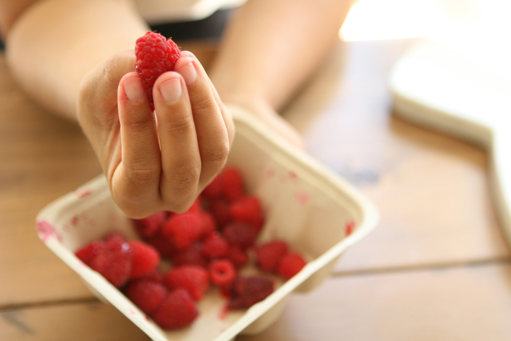 Natasha Asselstine Nutrition | Coconut Cupcakes #dairy free #gluten free #gaps #paleo #scd
